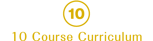 10 Course Curriculum